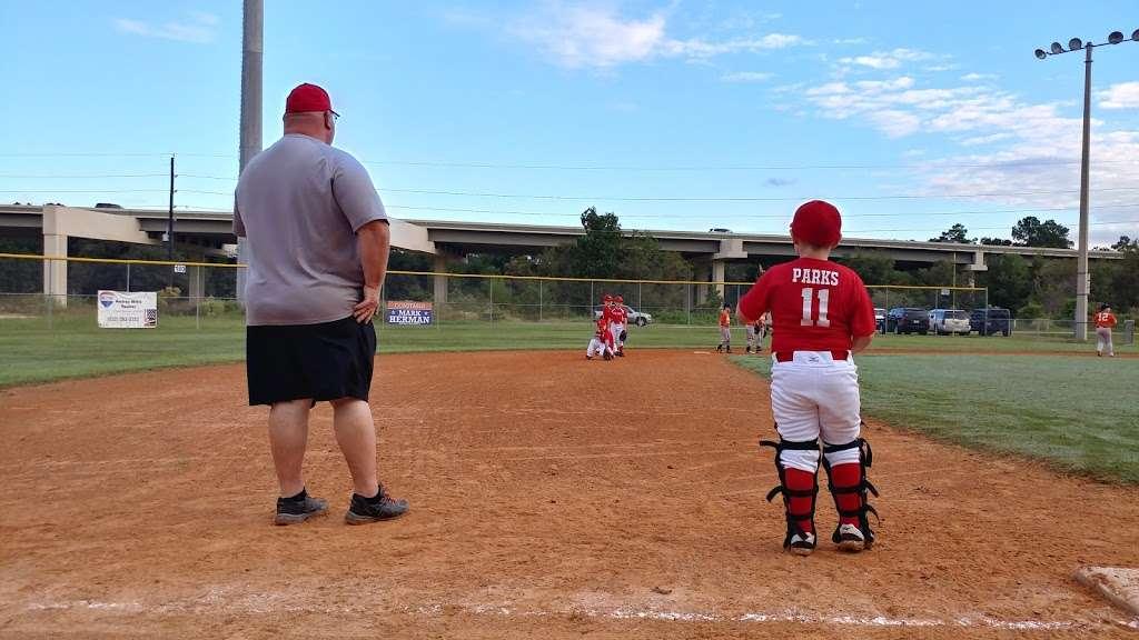 Rothwood Park Baseball - park    Photo 9 of 10   Address: 22430 Rothwood Rd, Spring, TX 77389, USA