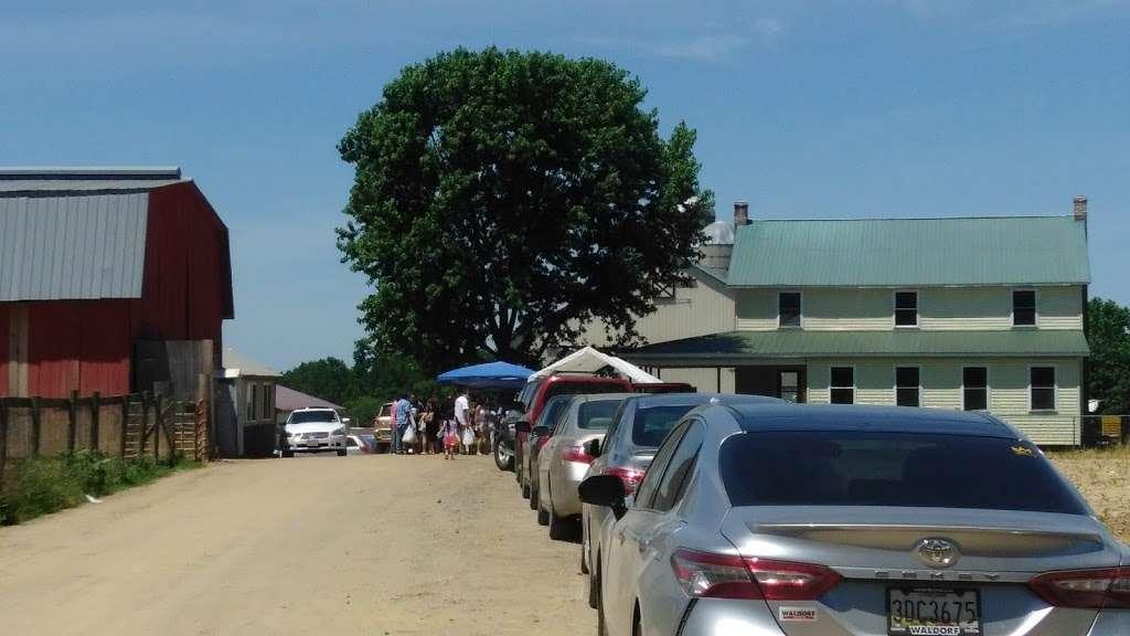 Amish meat John Wye - store  | Photo 5 of 10 | Address: 37404 Westham Ln, Mechanicsville, MD 20659, USA | Phone: (240) 707-1269