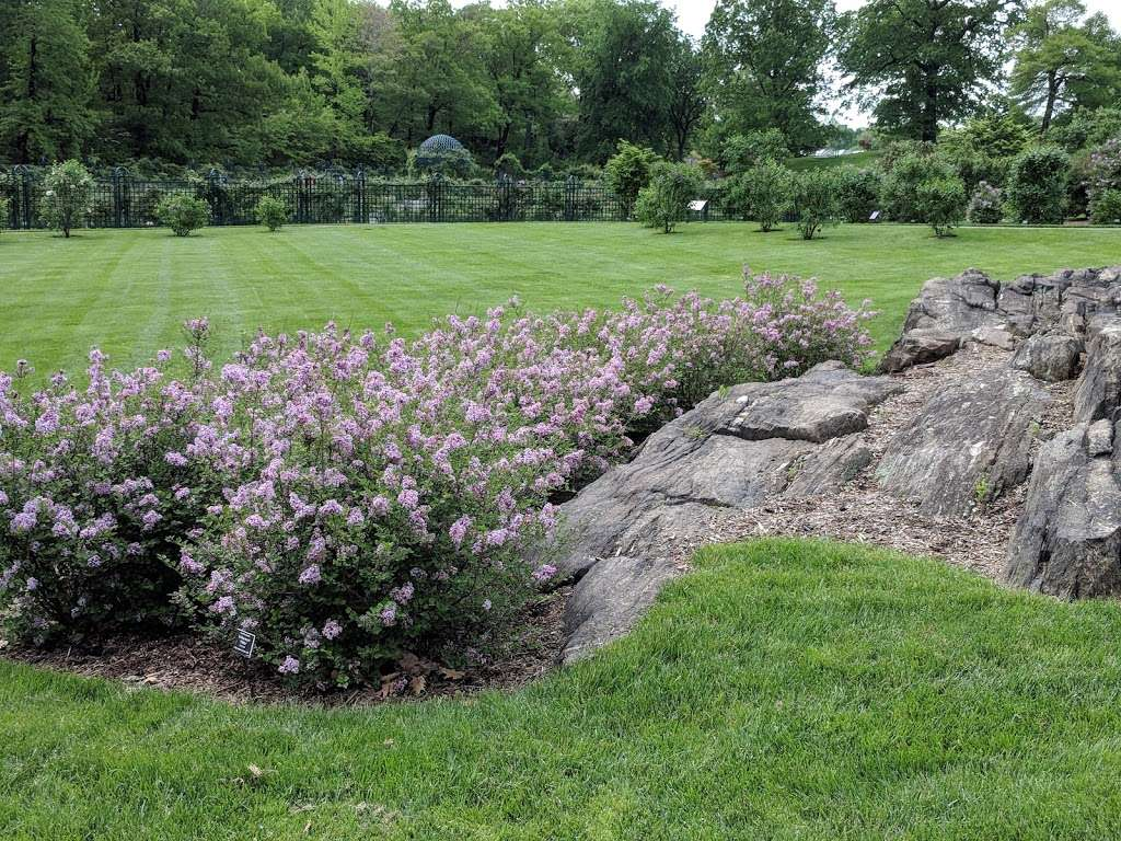 Rockefeller Rose Garden - park  | Photo 1 of 10 | Address: Bronx River Pkwy, Bronx, NY 10467, USA | Phone: (718) 817-8700