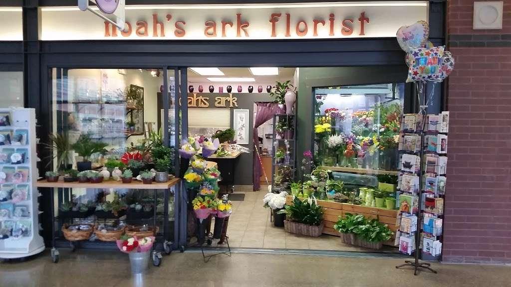 Noahs Ark Florist - florist  | Photo 2 of 10 | Address: 200 Hudson Street Harborside Financial Center, Jersey City, NJ 07311, USA | Phone: (201) 521-1031