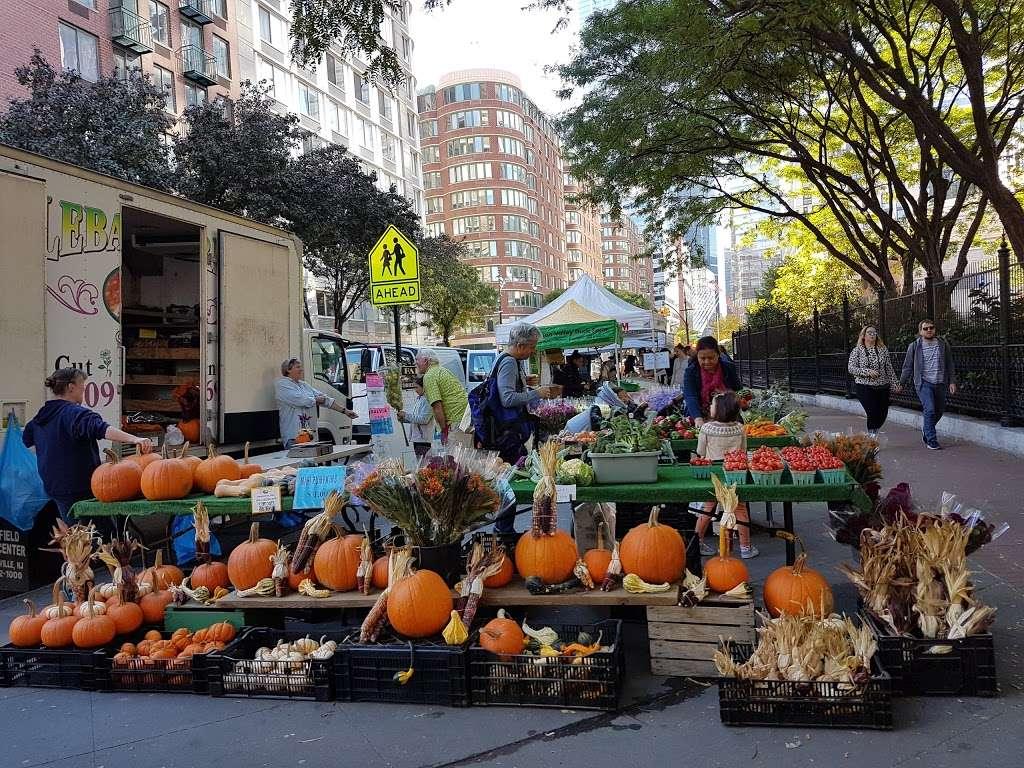 Washington Market Park - park  | Photo 5 of 10 | Address: 199 Chambers St, New York, NY 10007, USA | Phone: (212) 639-9675