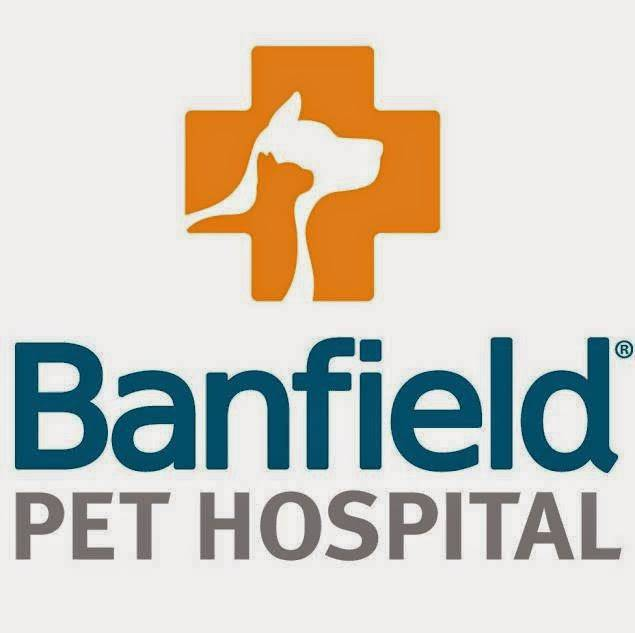 Banfield Pet Hospital - veterinary care  | Photo 8 of 8 | Address: 1836 Joe Battle Blvd, El Paso, TX 79936, USA | Phone: (915) 849-9700