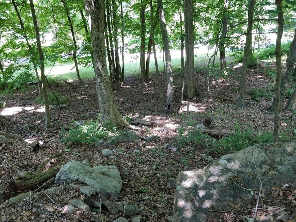 Betsy Sluder Nature Preserve - park    Photo 3 of 10   Address: 11 Shippen Rd, Armonk, NY 10504, USA