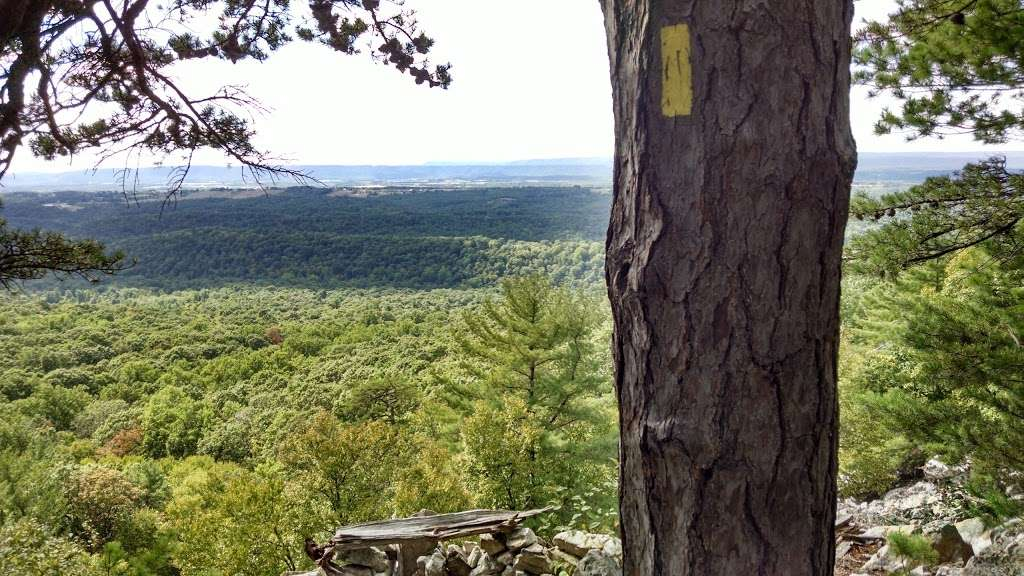State Game Lands Number 81 - park  | Photo 4 of 10 | Address: Orbisonia, PA 17243, USA