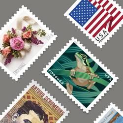 United States Postal Service - post office  | Photo 8 of 10 | Address: 7724 35th Ave NE, Seattle, WA 98115, USA | Phone: (800) 275-8777