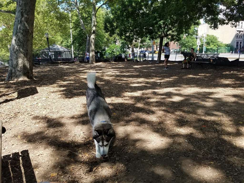 142nd Street Dog Run - park  | Photo 3 of 10 | Address: 675 Riverside Dr, New York, NY 10031, USA | Phone: (212) 870-3070