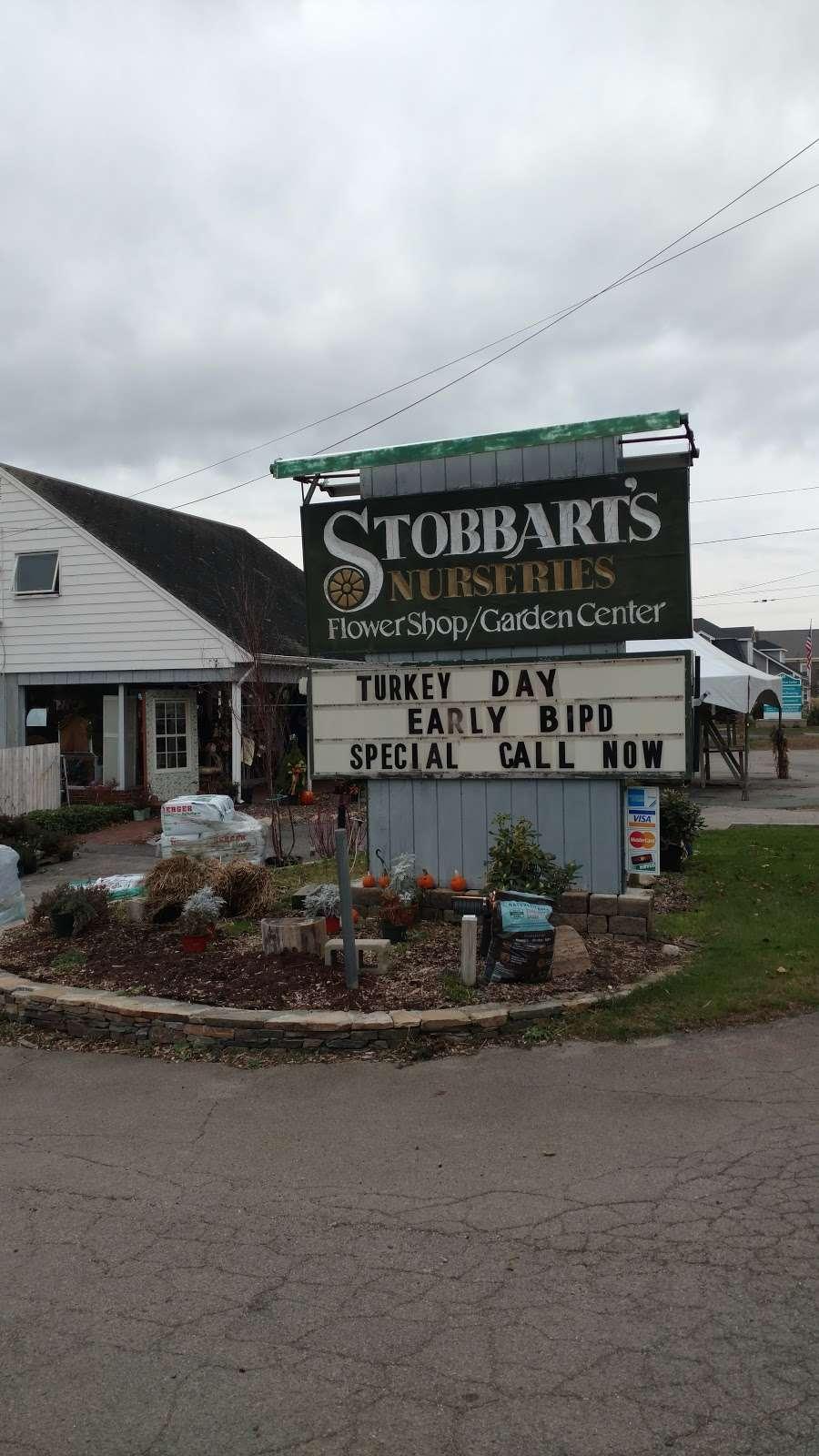 Stobbarts Nurseries Inc - florist    Photo 8 of 10   Address: 444 East Central Street, Franklin, MA 02038, USA   Phone: (508) 528-0800