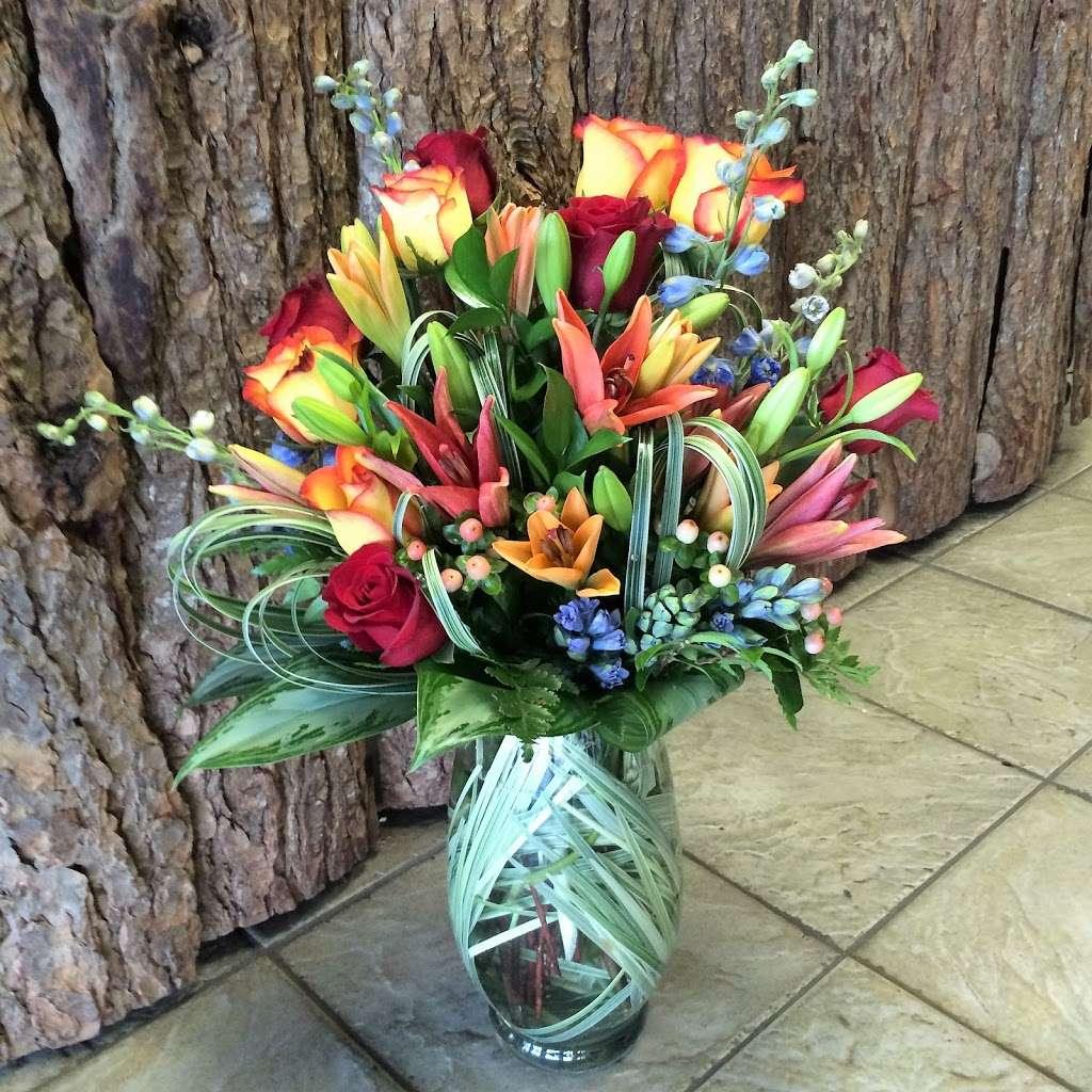 Noahs Ark Florist - florist  | Photo 5 of 10 | Address: 200 Hudson Street Harborside Financial Center, Jersey City, NJ 07311, USA | Phone: (201) 521-1031
