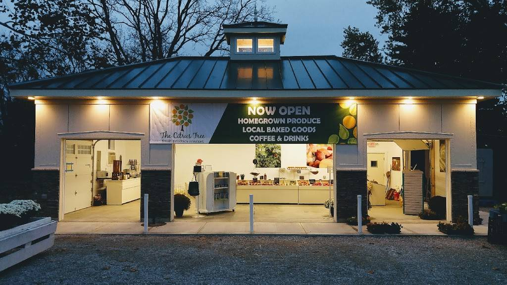 The Citrus Tree - home goods store  | Photo 1 of 8 | Address: 10031 Corbett Rd, Cincinnati, OH 45231, USA | Phone: (513) 313-3638