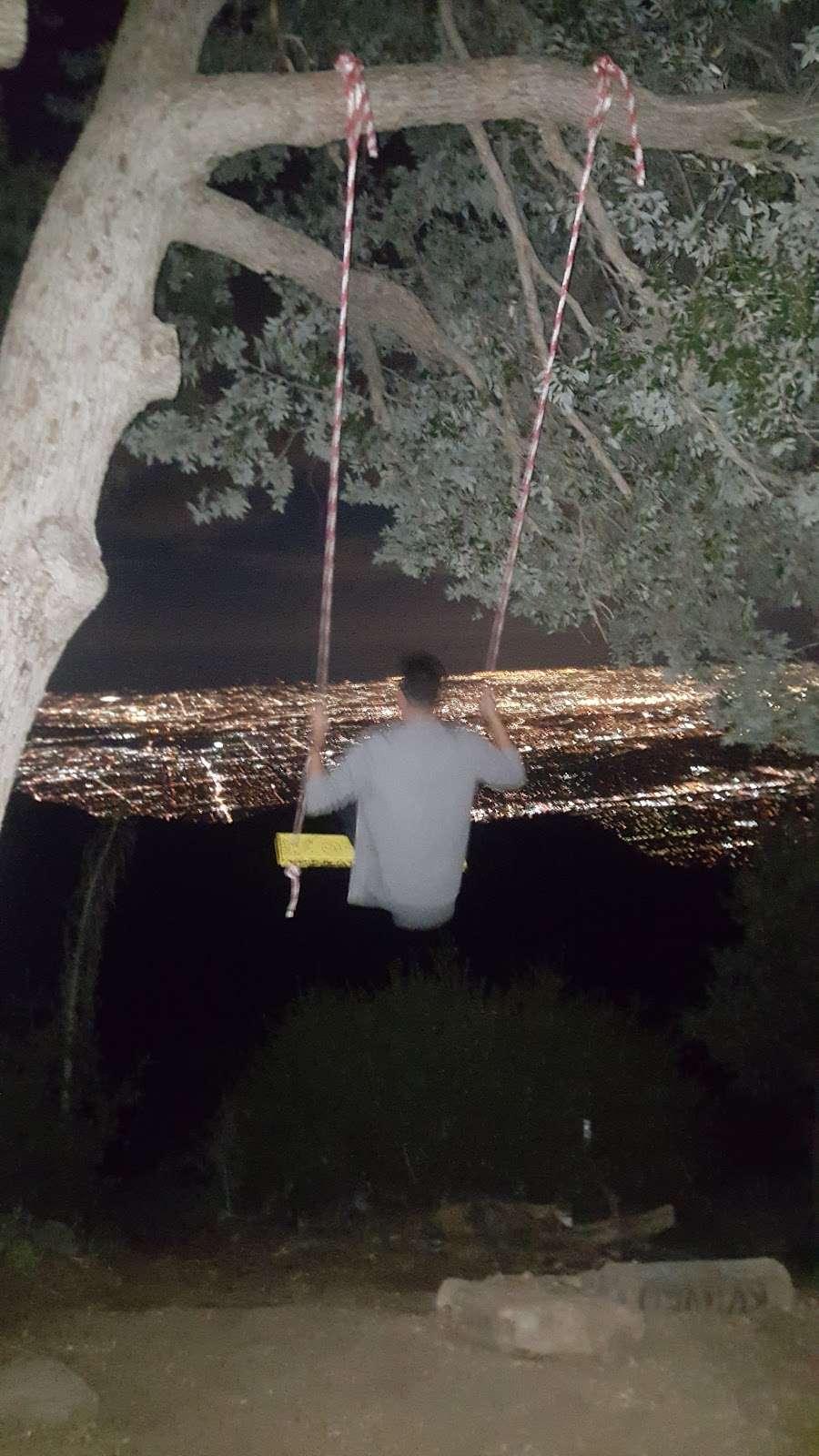 Secret Swings Mount Wilson - park  | Photo 4 of 10 | Address: Mt Wilson Circle Road, Pasadena, CA 91107, USA