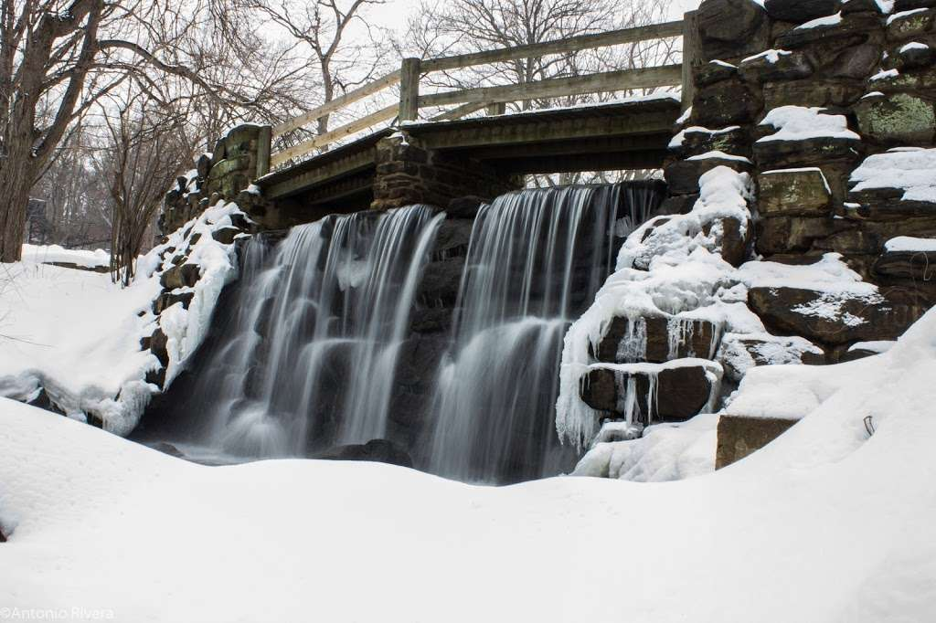Tibbetts Brook Park - park  | Photo 9 of 10 | Address: 355 Midland Ave, Yonkers, NY 10704, USA | Phone: (914) 231-2865