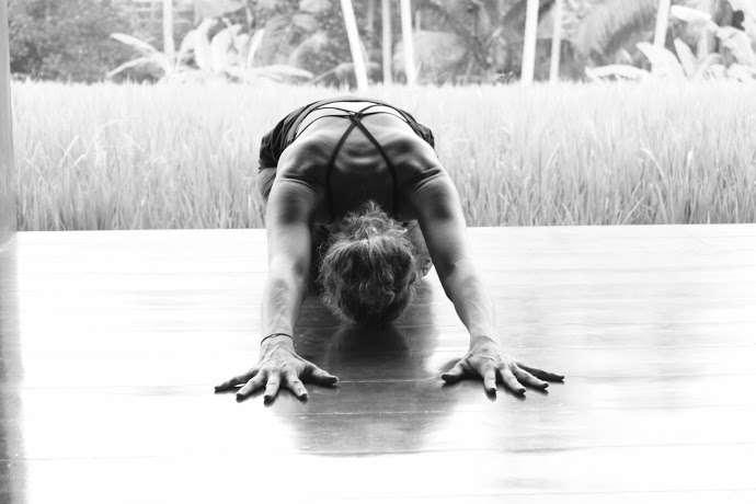 yoga with dani - school  | Photo 1 of 5 | Address: 1025 Maxwell Ln, Hoboken, NJ 07030, USA | Phone: (201) 803-7816