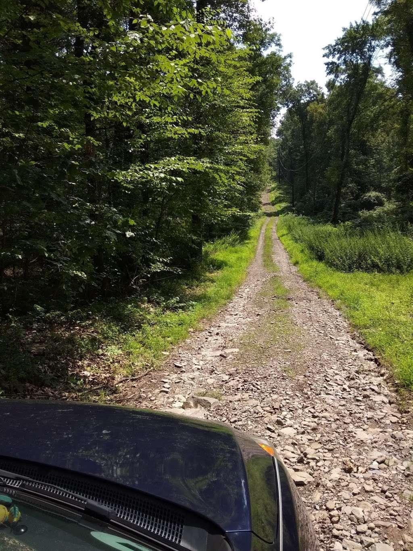 Moon Lake State Forest Recreation Area - park  | Photo 5 of 10 | Address: Hunlock Creek, PA 18621, USA