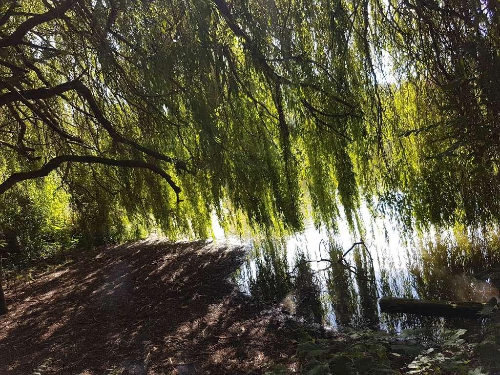 Holwell Hyde - park  | Photo 10 of 10 | Address: Welwyn Garden City AL7 4AA, UK