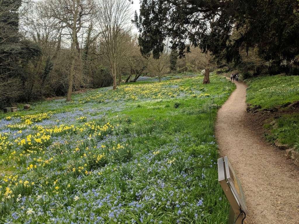Myddelton House Gardens - cafe  | Photo 3 of 10 | Address: Bulls Cross, Enfield EN2 9HG, UK | Phone: 0300 003 0610