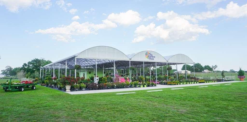 Select Growers - store    Photo 4 of 10   Address: 4391 FL-11, De Leon Springs, FL 32130, USA   Phone: (386) 734-8883
