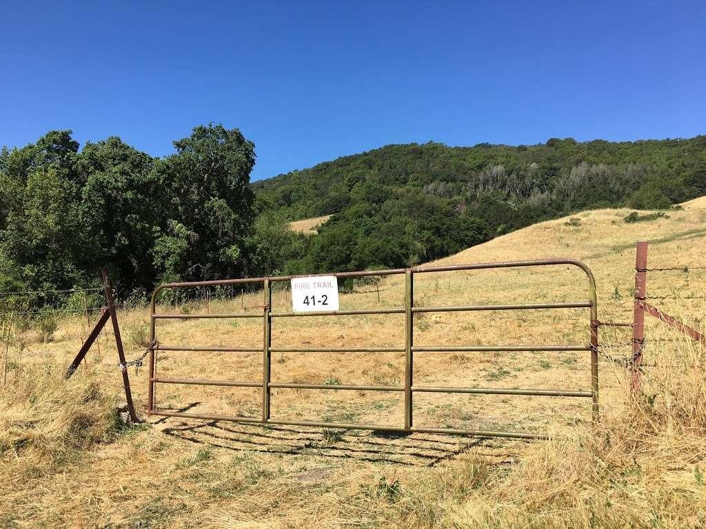 Rancho Laguna Park - park  | Photo 1 of 10 | Address: 2101 Camino Pablo, Moraga, CA 94556, USA | Phone: (925) 376-2520