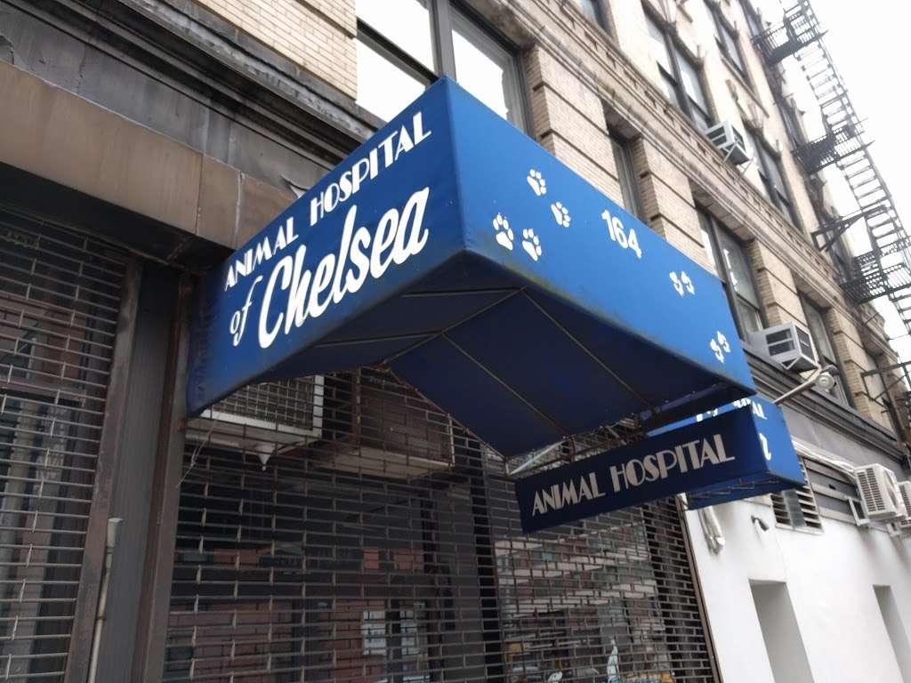 Animal Hospital of Chelsea - veterinary care  | Photo 5 of 5 | Address: 164 W 21st St, New York, NY 10011, USA | Phone: (212) 243-3020
