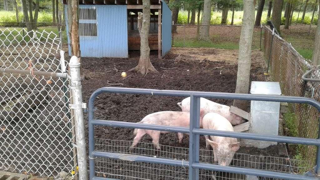 OakGlen Farms Beef & Pork - store  | Photo 1 of 2 | Address: 555 Oak Glen Rd, Howell, NJ 07731, USA