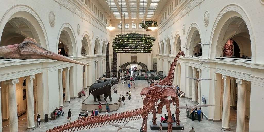 The Field Museum - museum  | Photo 4 of 10 | Address: 1400 S Lake Shore Dr, Chicago, IL 60605, USA | Phone: (312) 922-9410