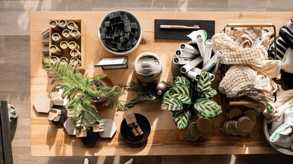 The Plant House - clothing store    Photo 8 of 8   Address: 22801 Woodward Ave, Ferndale, MI 48220, USA   Phone: (248) 270-8404
