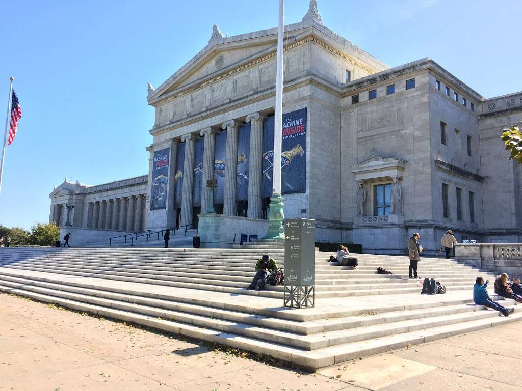 The Field Museum - museum  | Photo 2 of 10 | Address: 1400 S Lake Shore Dr, Chicago, IL 60605, USA | Phone: (312) 922-9410