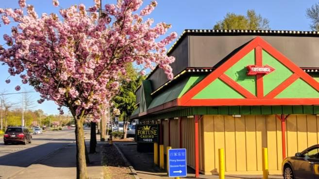 Fortune Casino Tukwila - restaurant  | Photo 1 of 10 | Address: 14025 Interurban Ave S, Tukwila, WA 98168, USA | Phone: (206) 243-1491