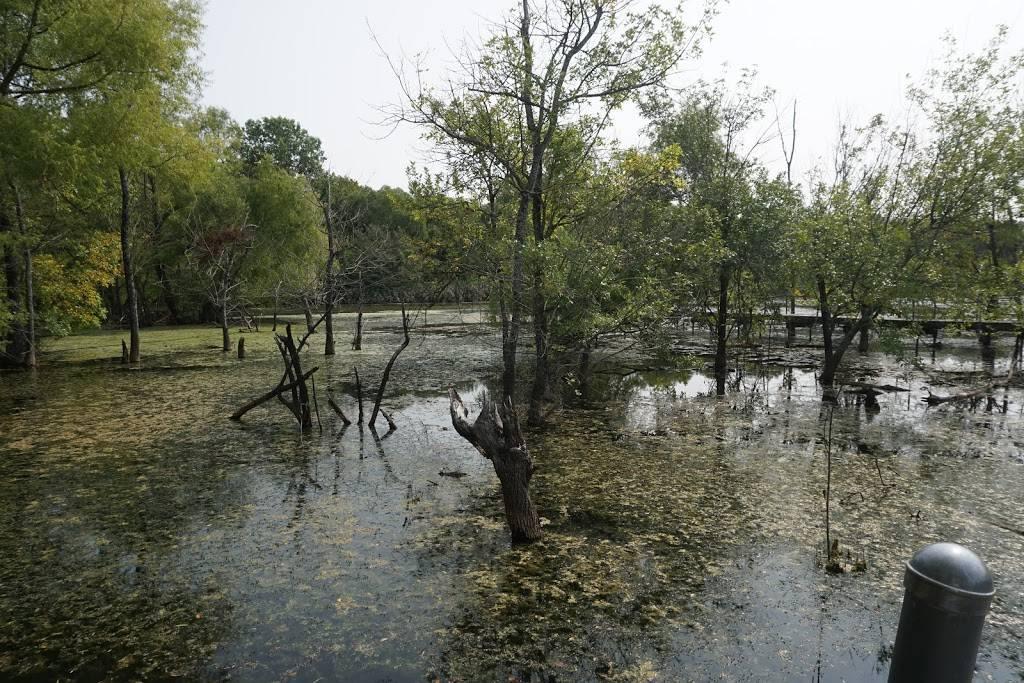 Heard Natural Science Museum & Wildlife Sanctuary - museum  | Photo 7 of 7 | Address: 1 Nature Pl, McKinney, TX 75069, USA | Phone: (972) 562-5566