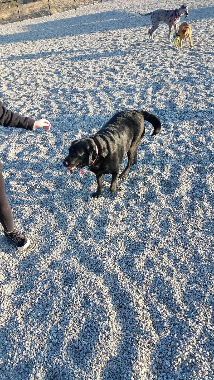 Boneyard Dog Park - park  | Photo 2 of 10 | Address: Kingston, MA 02364, USA