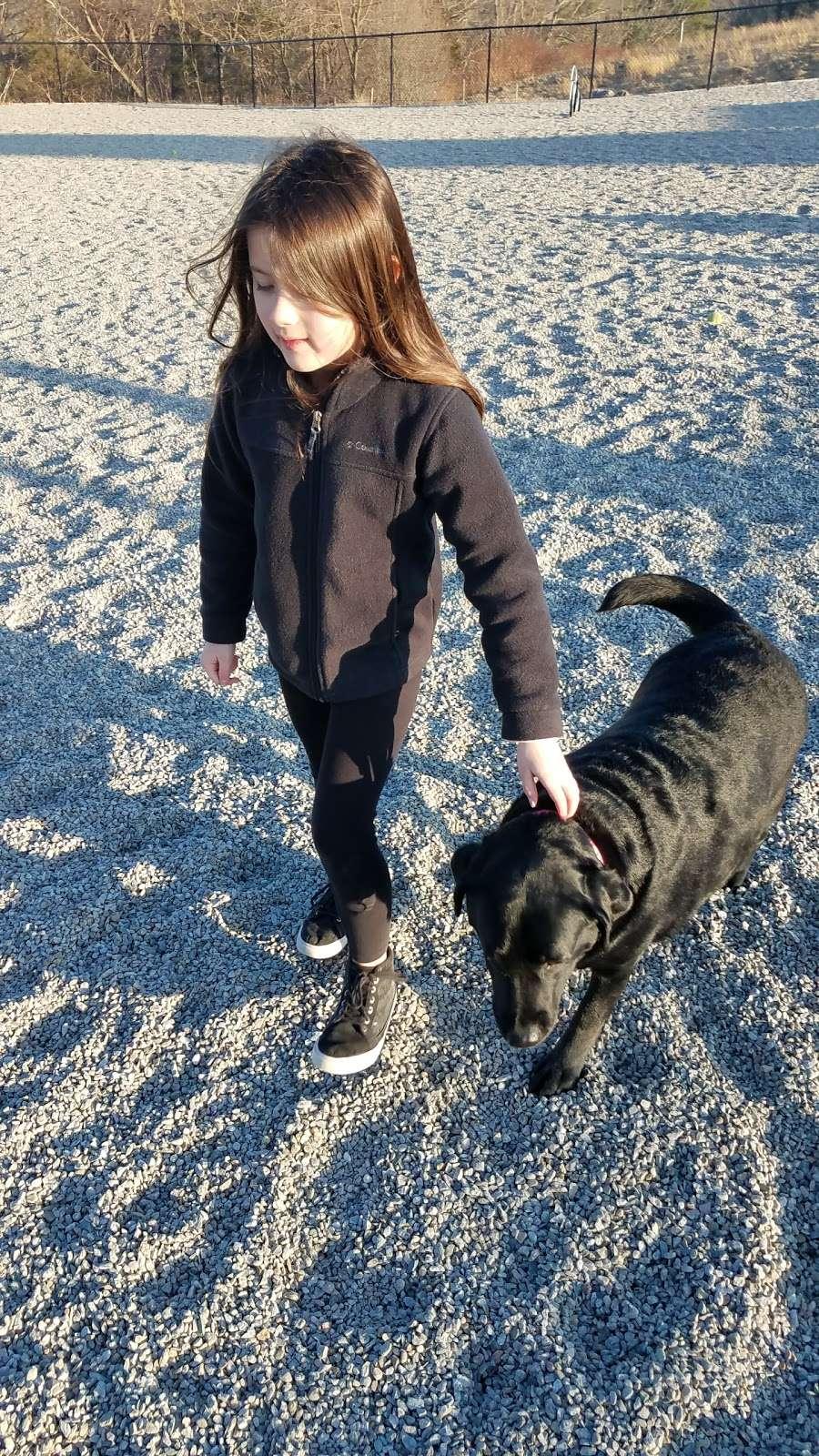 Boneyard Dog Park - park  | Photo 4 of 10 | Address: Kingston, MA 02364, USA