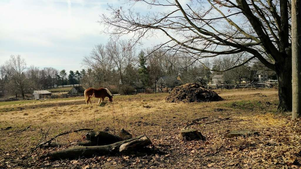 Landis Valley Farm - museum  | Photo 7 of 10 | Address: 2451 Kissel Hill Rd, Lancaster, PA 17601, USA | Phone: (717) 569-0401