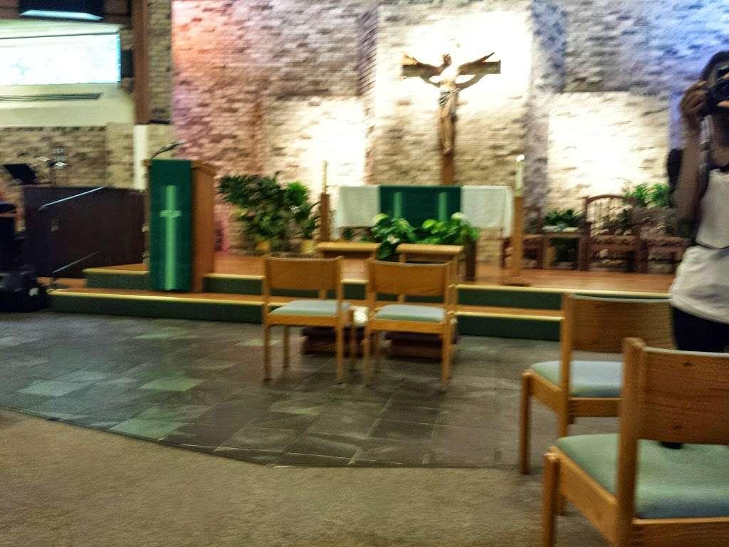 St. Francis of Assisi Catholic Church - church    Photo 9 of 10   Address: 834 S Orange Blossom Trail, Apopka, FL 32703, USA   Phone: (407) 886-4602