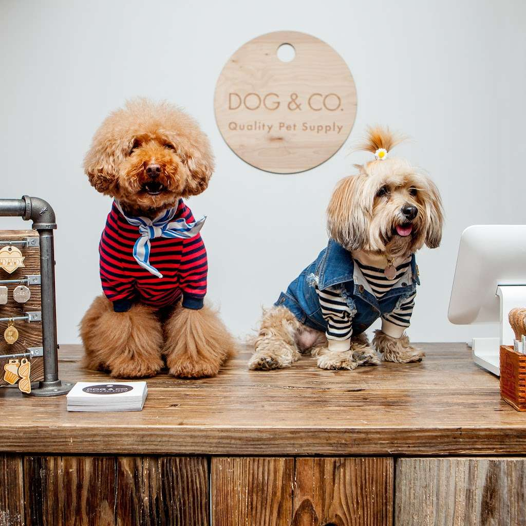 DOG & CO. - store  | Photo 9 of 10 | Address: Underground in the TurnStyle Market, 1000 8th Ave, New York, NY 10019, USA | Phone: (646) 351-0905