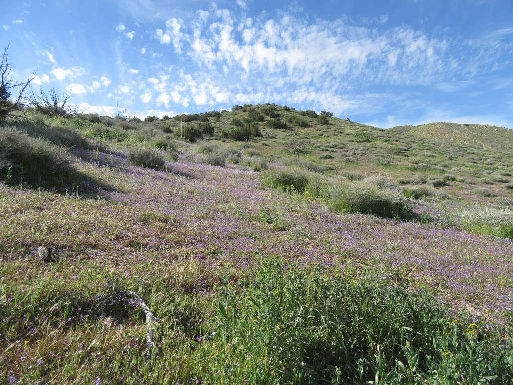 Bonita Vista Hiking Trail - park  | Photo 4 of 10 | Address: Bonita Vista St, Apple Valley, CA 92308, USA | Phone: (760) 252-6000