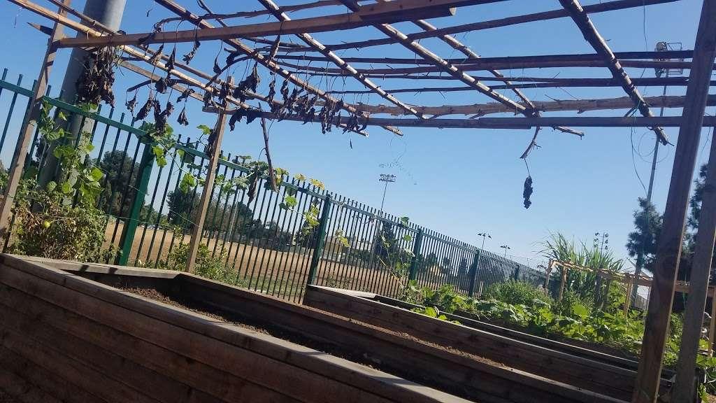 Belvedere Park Community Garden - park  | Photo 3 of 9 | Address: 337 N Mednik Ave, East Los Angeles, CA 90022, USA