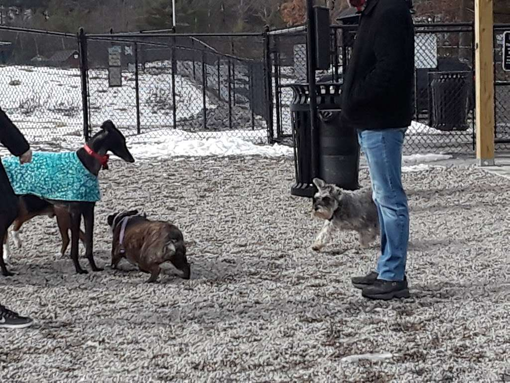 Boneyard Dog Park - park  | Photo 3 of 10 | Address: Kingston, MA 02364, USA
