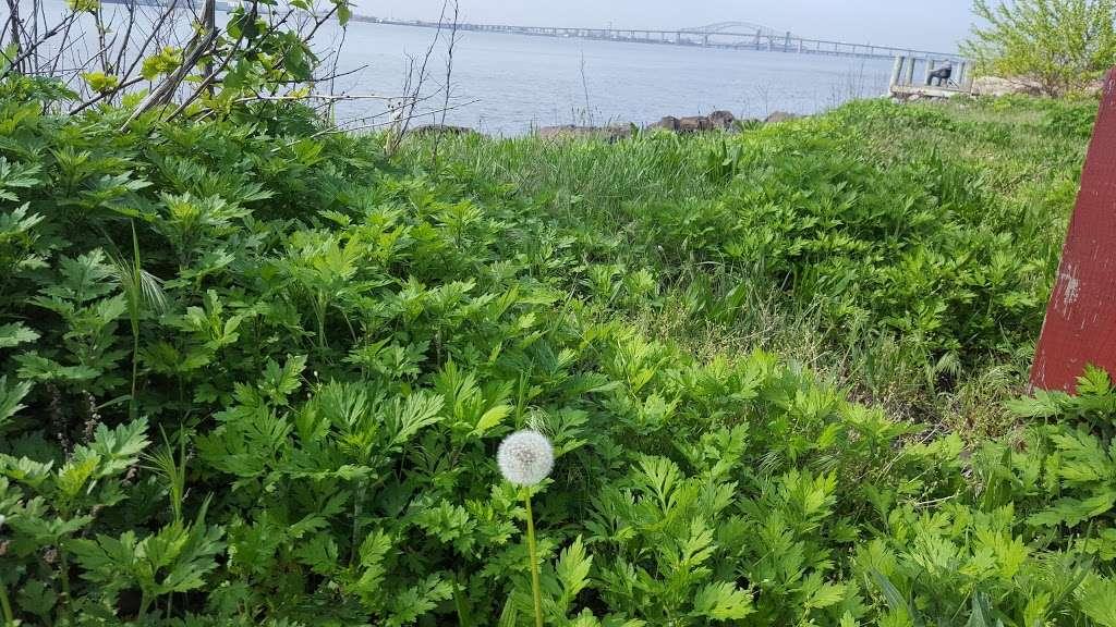 Veterans Park - park  | Photo 10 of 10 | Address: 26 Park Rd, Bayonne, NJ 07002, USA | Phone: (201) 858-6122