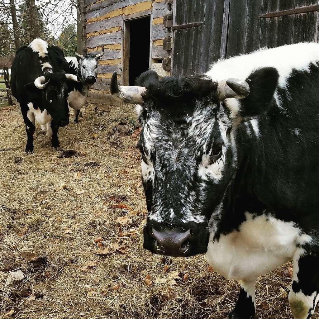 Landis Valley Farm - museum  | Photo 3 of 10 | Address: 2451 Kissel Hill Rd, Lancaster, PA 17601, USA | Phone: (717) 569-0401