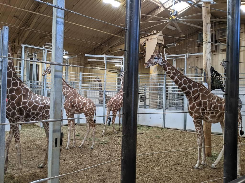 Omaha Zoo South (Main) Entrance - zoo    Photo 9 of 10   Address: 3701 S 10th St, Omaha, NE 68107, USA   Phone: (402) 733-8401