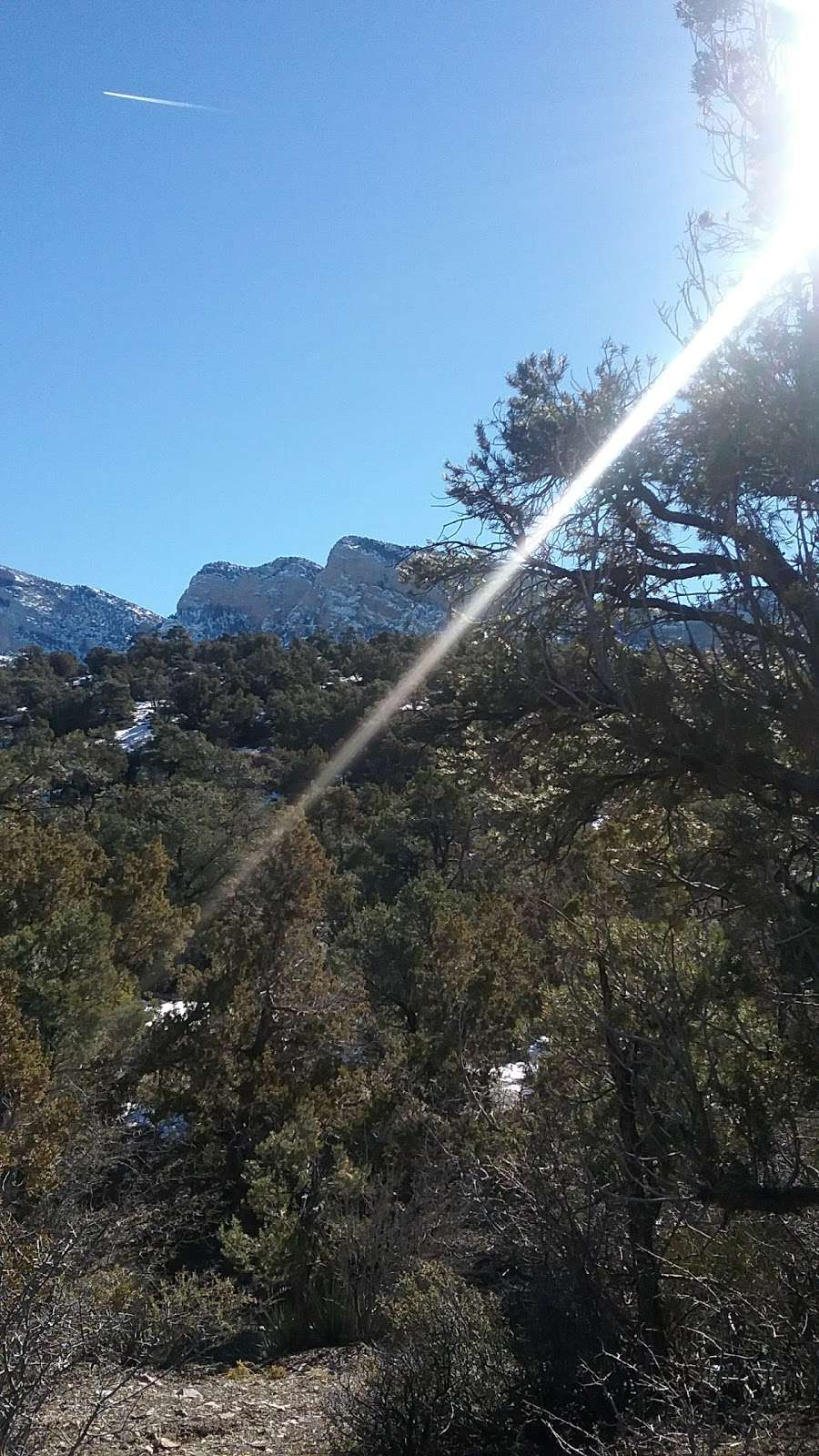 Camp Potosi Park - park    Photo 7 of 10   Address: 11480 Mount Potosi Canyon Rd, Las Vegas, NV 89124, USA   Phone: (702) 455-8200