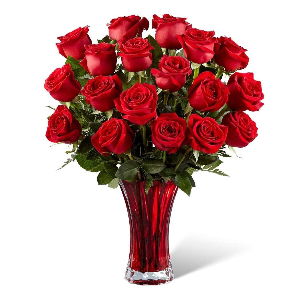 Stobbarts Nurseries Inc - florist    Photo 6 of 10   Address: 444 East Central Street, Franklin, MA 02038, USA   Phone: (508) 528-0800