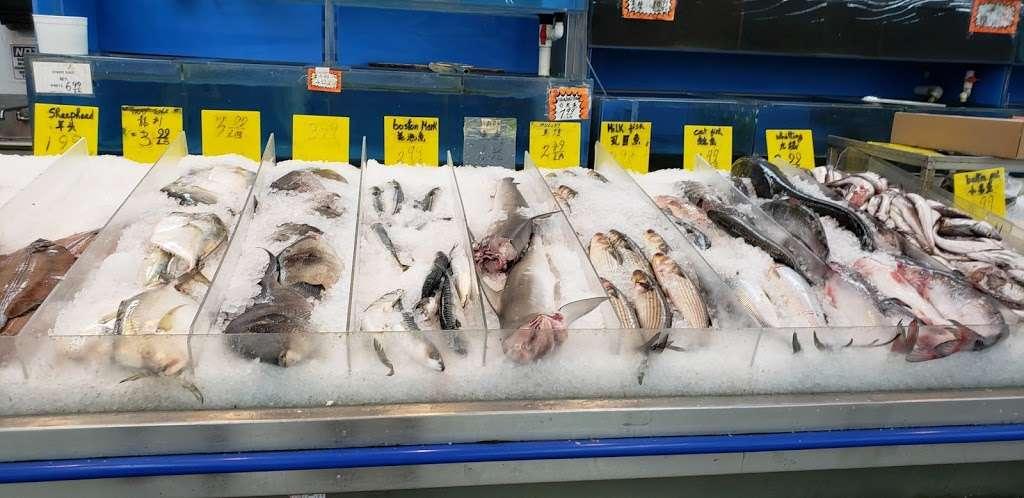 No1 Asian Supermarket - supermarket  | Photo 3 of 9 | Address: 2842 St Vincent St, Philadelphia, PA 19149, USA | Phone: (215) 338-4787