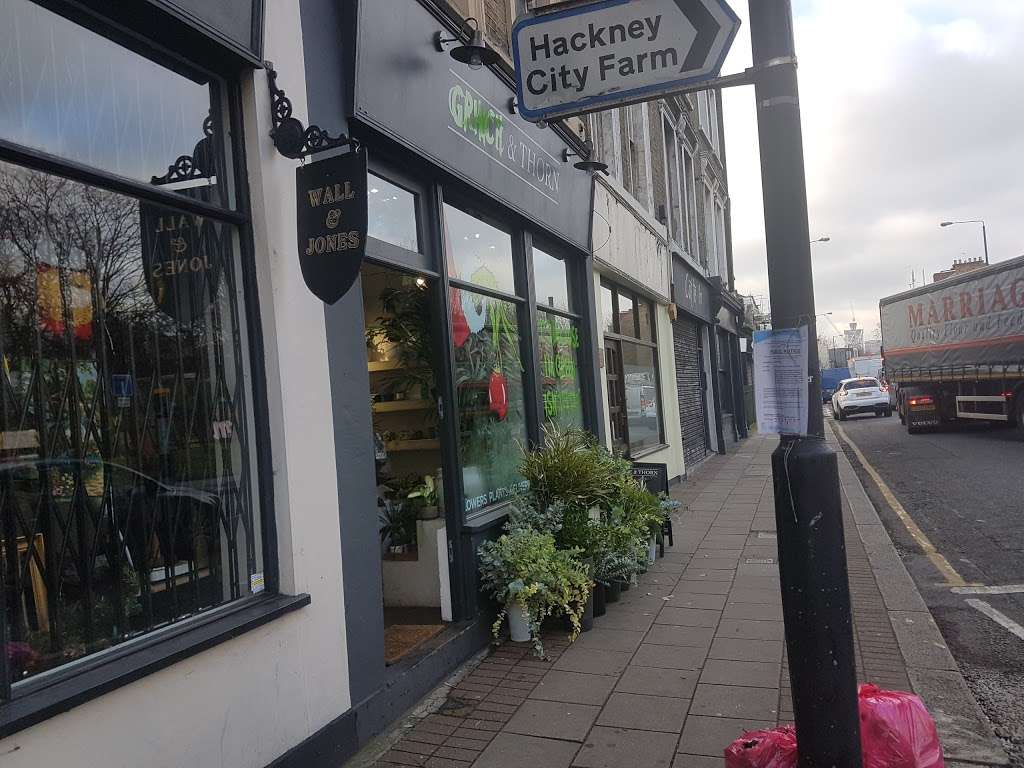 Grace and Thorn - florist  | Photo 4 of 10 | Address: 338 Hackney Rd, London E2 7AX, UK | Phone: 020 7739 1521
