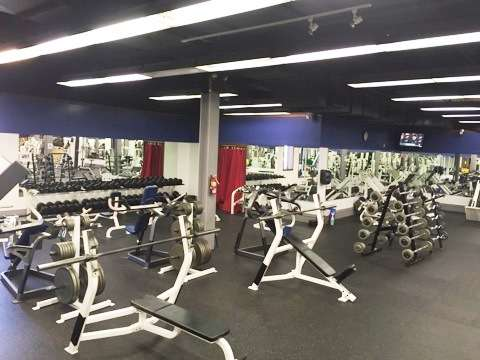 Down Under Sports And Fitness 31 Catherine St Shillington Pa 19607 Usa