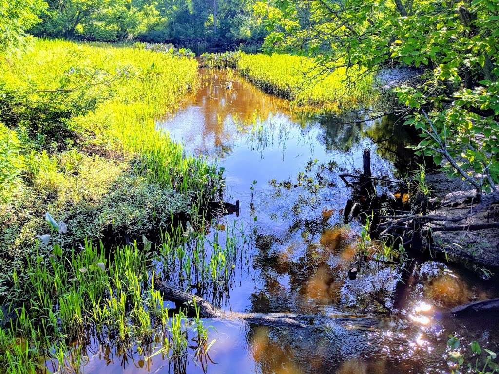 Pennington Park - park  | Photo 6 of 10 | Address: 801 Creek Rd, Delanco, NJ 08075, USA | Phone: (609) 265-5858
