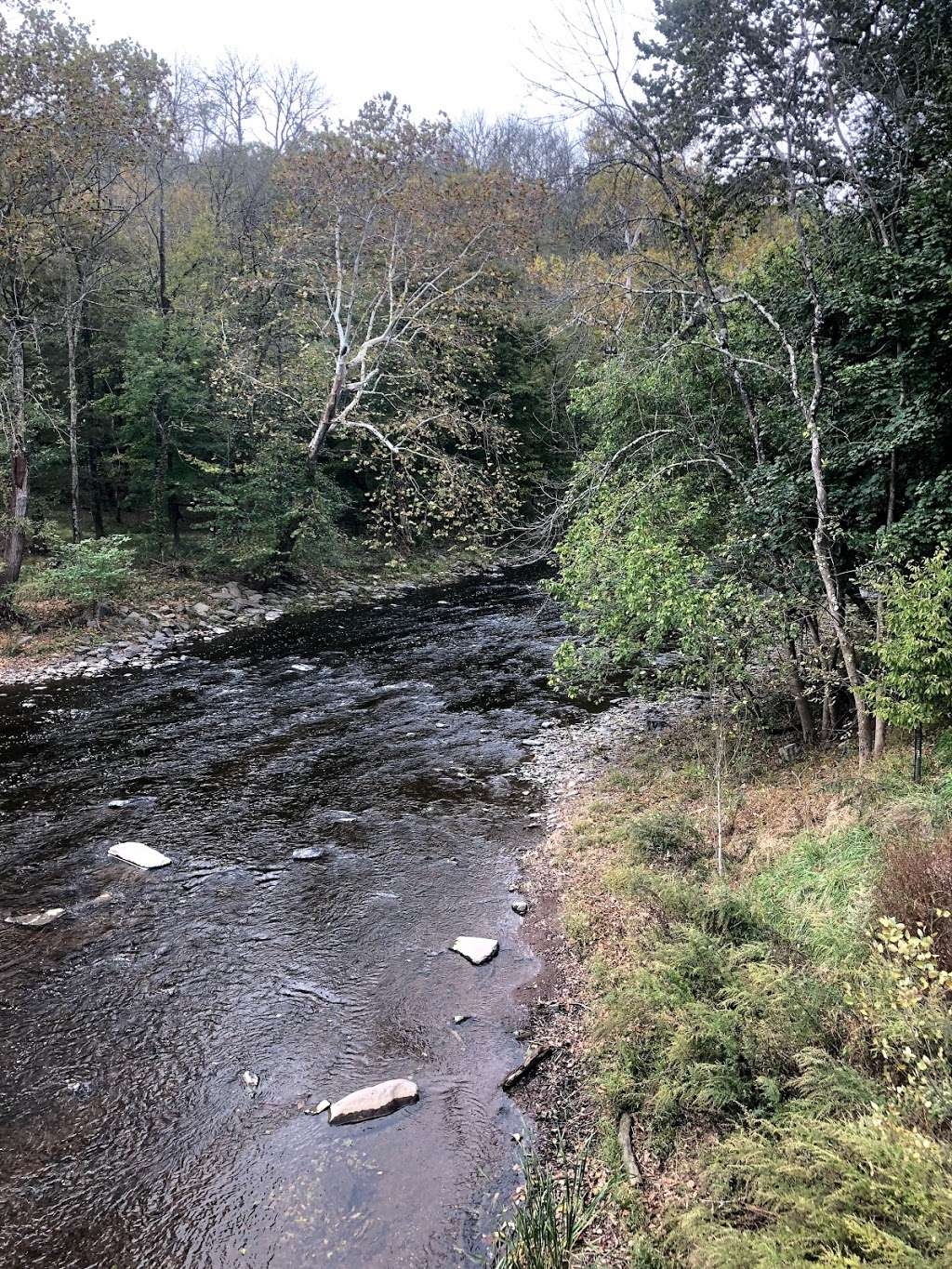 The Tohickon Creek At the Point Pleasant Bridge - park  | Photo 7 of 10 | Address: River Rd, Pipersville, PA 18947, USA