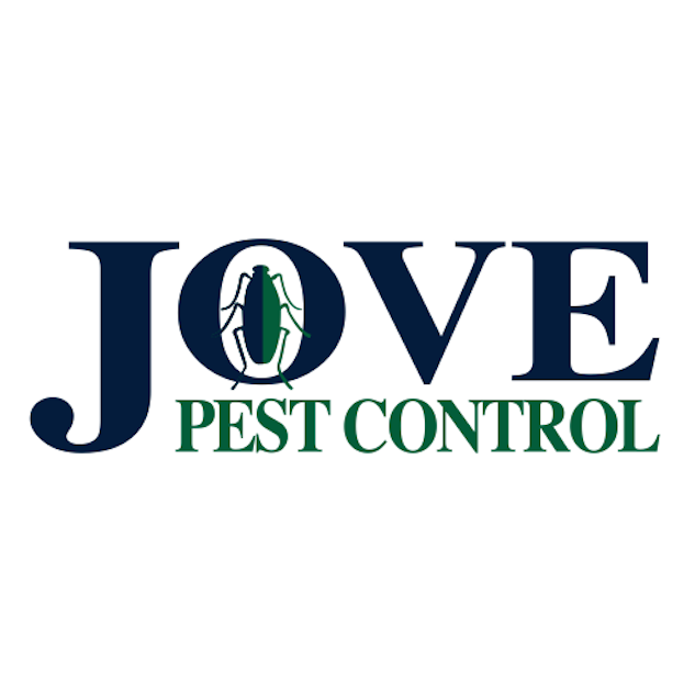 Jove Pest Control, Inc. - home goods store  | Photo 6 of 6 | Address: 8 W 126th St, New York, NY 10027, USA | Phone: (844) 879-5683