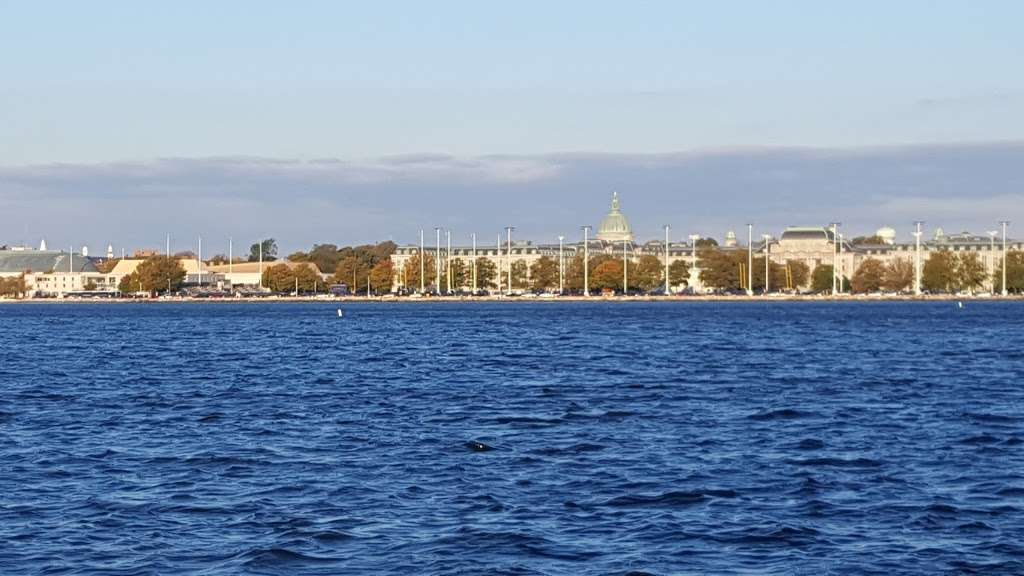 Horn Point Park - park  | Photo 5 of 10 | Address: Chesapeake Landing, Annapolis, MD 21403, USA