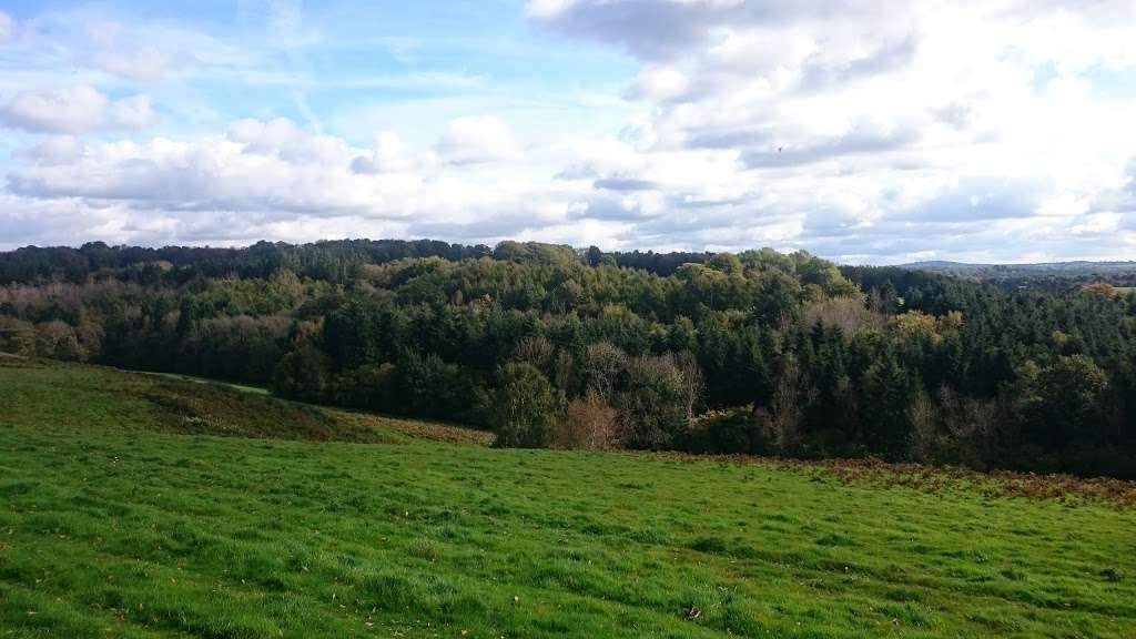 Burrswood Health and Wellbeing - health  | Photo 8 of 10 | Address: Bird in Hand Lane, Groombridge, Tunbridge Wells TN3 9PY, UK | Phone: 01892 865988