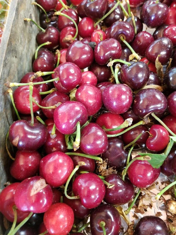 Palace of Fruit - store  | Photo 7 of 10 | Address: 8 Ely Rd N, Petaluma, CA 94954, USA | Phone: (707) 795-5311